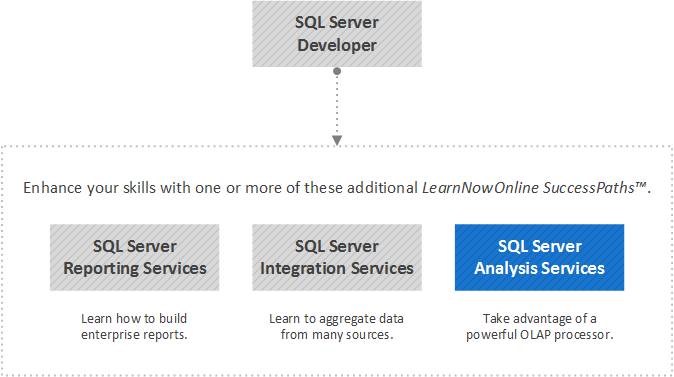 SQL Server Analysis Services