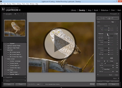 Lightroom 4, Part 6: Publishing, Slideshow, & Web