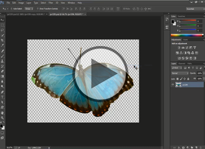 Photoshop CC, Part 5: Pen Tool, and Sizing